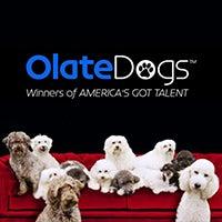 olate-dogs-thumb1.jpg